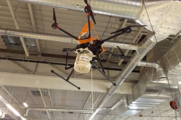 Dronem w omacnicę