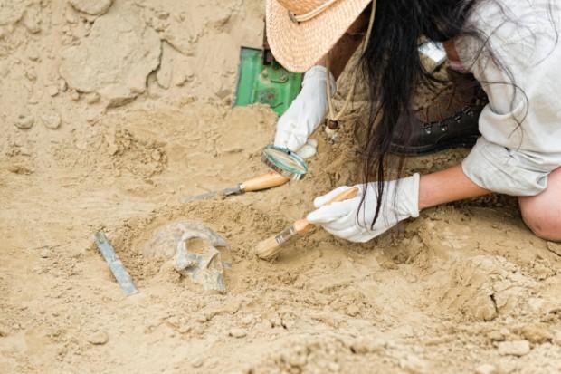 Prehistoryczne rolnictwo rozkwitło dzięki kobietom o mocnych kościach