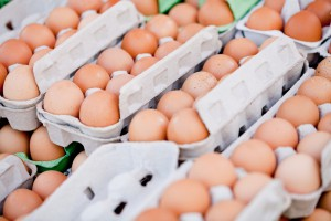 Nowy program zwalczania salmonelli zagrozi producentom jaj?
