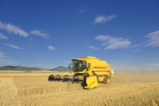 Coceral: Wyższa prognoza zbiorów zbóż w UE w 2017 r.