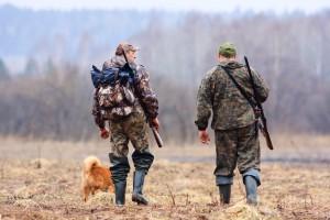 Prokuratura nadzoruje śledztwo ws. znęcania się nad jeleniem