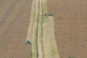 Bułgaria: Dominują duże gospodarstwa