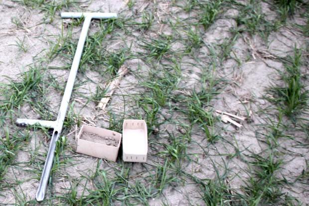 Sprawdź zawartość azotu mineralnego w glebie
