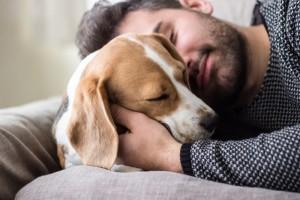Hiszpania: Ustawa uznająca zwierzęta domowe za żywe stworzenia