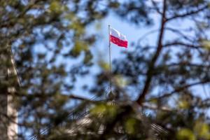 Sejm jednogłośnie za specustawą, która pomoże w walce z ASF
