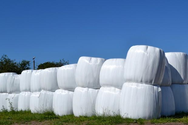 Jakie ceny sianokiszonki i od czego zależą?