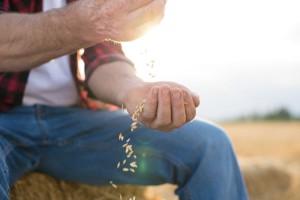 Gdzie podziała się ziemia przekazana przez rolników za emerytury?
