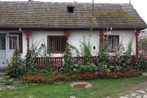 Rumunia: Mniej gospodarstw i gruntów rolnych