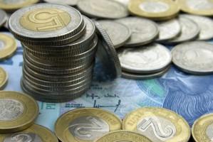 ARiMR: Wielkość wypłat za półmetkiem