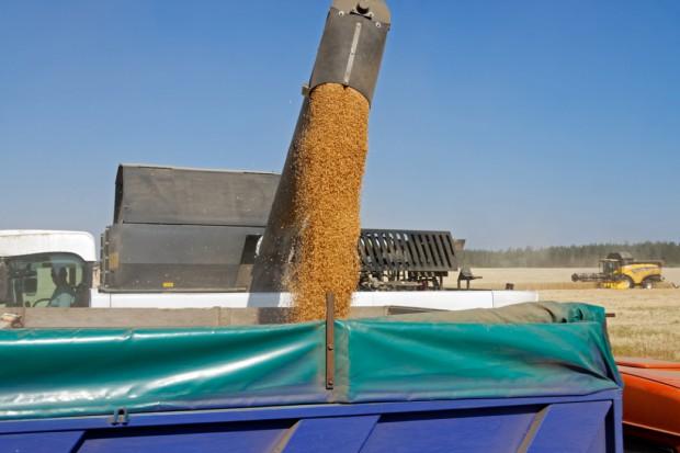 UE: Dodatkowe kontyngenty na import zbóż z Ukrainy