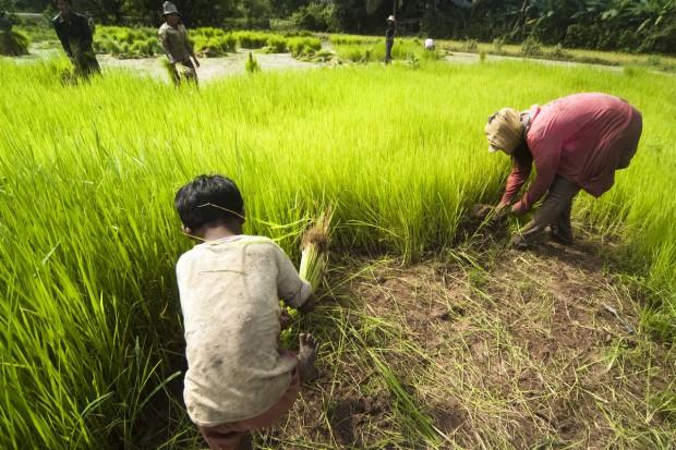 Kambodża zawarła z Chinami porozumienia warte kilka miliardów dolarów