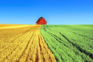 Dlaczego spółki oddadzą państwu dzierżawioną ziemię?
