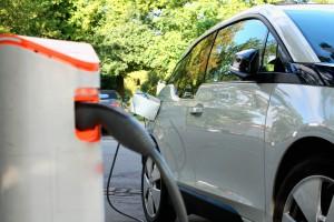 Opolskie: Lasy Polskie chcą pomóc właścicielom samochodów elektrycznych
