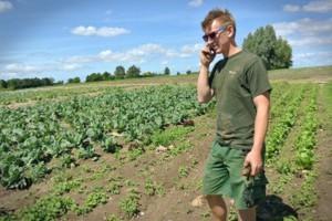 Niemcy: Potencjał rolnictwa ekologicznego to ponad 20 proc. liczby gospodarstw