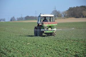 Pierwsza dawka azotu na wiosnę – jak ją ustalić?