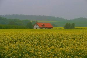 """Zmiany w """"Restrukturyzacji małych gospodarstw"""""""