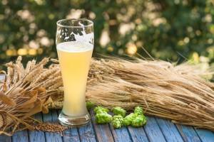 Rynek piwa stabilny