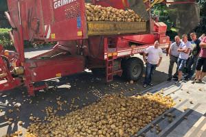 Unia Warzywno-Ziemniaczana powitała posłów ziemniakami