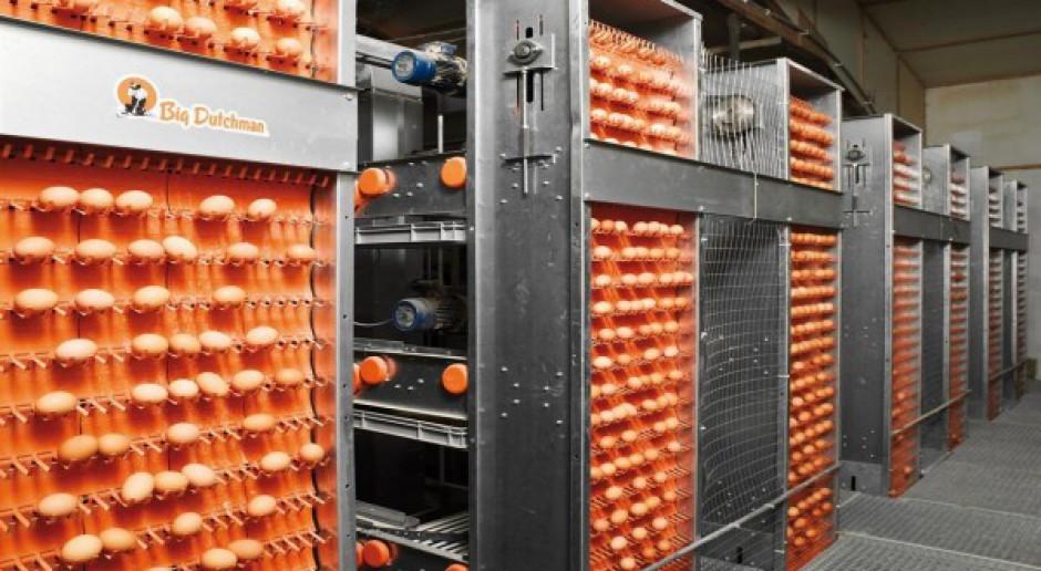 Innowacja dla ferm drobiu