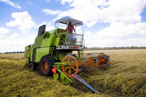 Prognoza zbiorów zbóż w Rosji