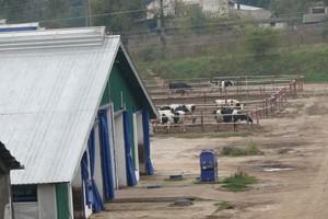 Rolnik - Farmer Roku 2010