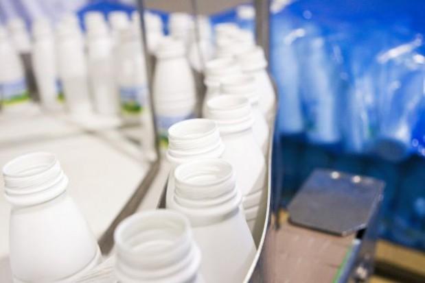 Prognoza cen mleka do 2013