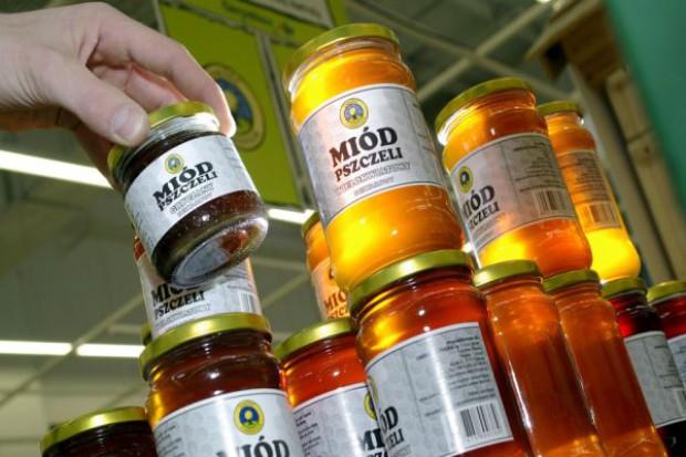 Miód może zdrożeć - pszczoły dziesiątkowane przez choroby