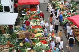 Kryzys ogórkowy dotyka polskich producentów