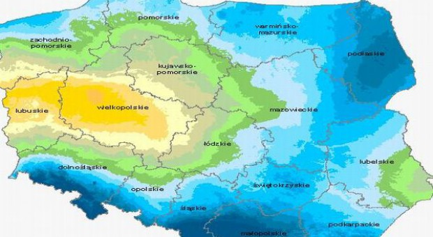 Wielkopolska i Ziemia Lubuska ma największe problemy z suszą