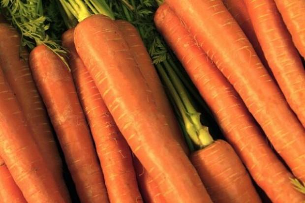 """Rosja: nie będziemy kierowali się """"beztroską"""" w imporcie warzyw z UE"""