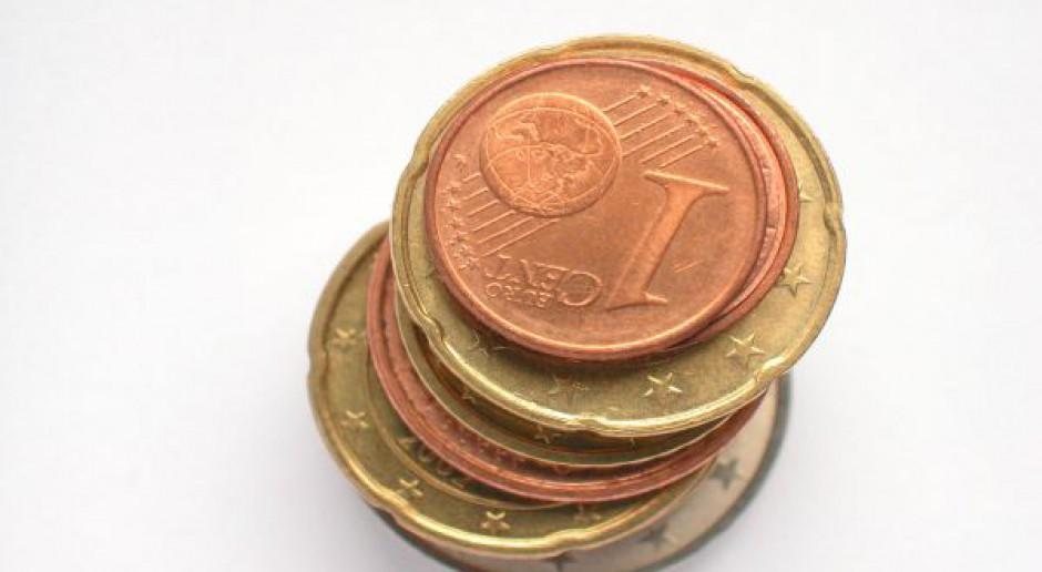 Budżet UE: Dopłaty bezpośrednie w górę?
