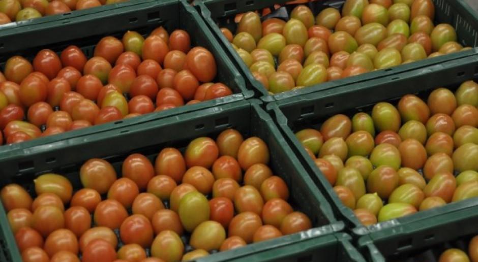 Rosja utrzymała zakaz importu świeżych warzyw z Polski