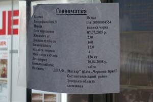 Nowa strategia Ukrainy dla rozwoju sektora wieprzowiny