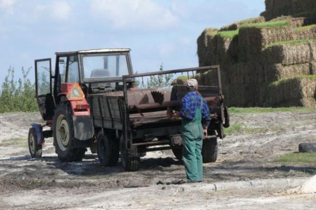 Rolnictwo czyli szara strefa?