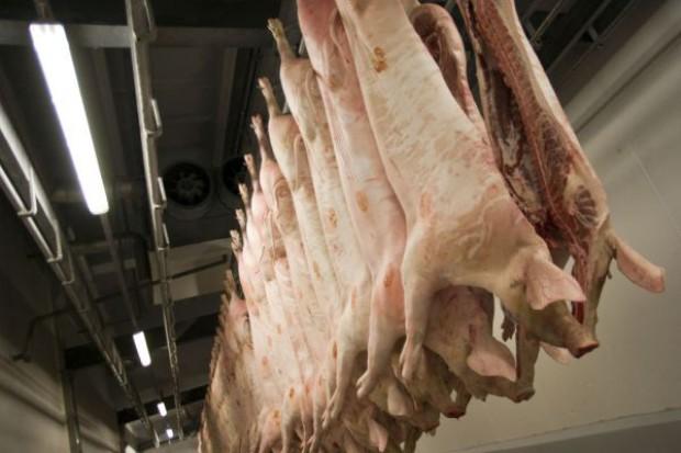 Rozbito gang handlujący kradzionym mięsem