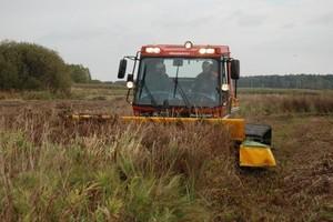 Ratujmy bagienne łąki