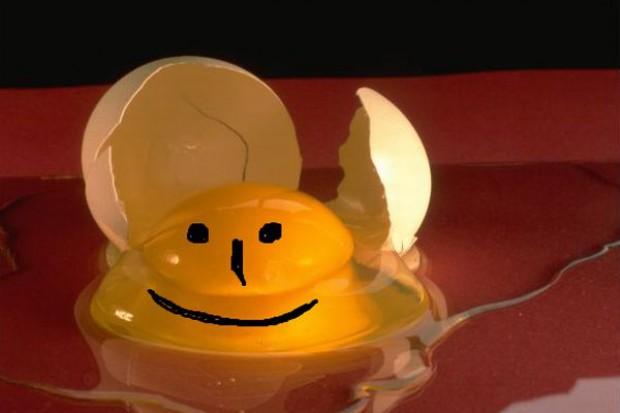 Zabawna refleksja dotycząca sprzedaży jaj prosto z gospodarstwa