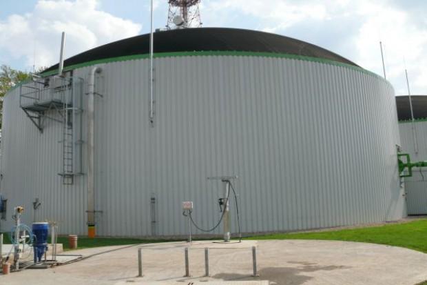 Wzrost produkcji biogazu w Europie