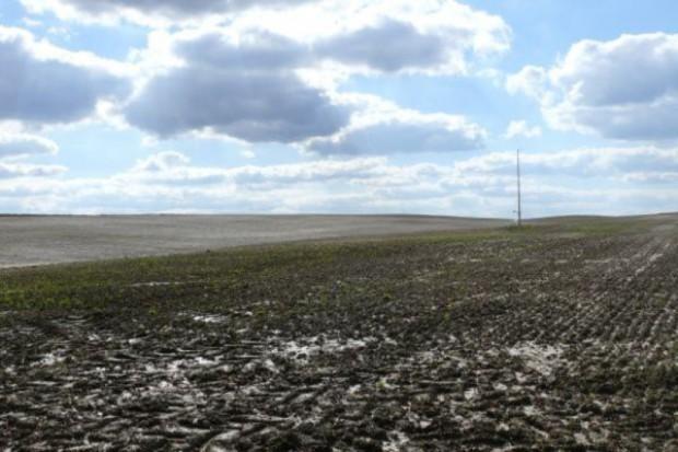 Na razie nie wiadomo, czy jesienna susza zmniejszy przyszłoroczne zbiory