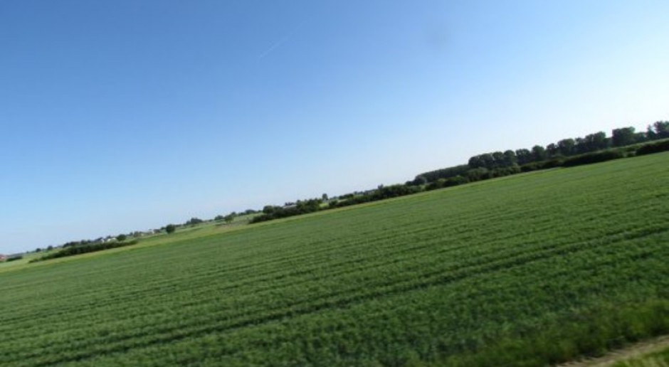 Dodatkowa presja na rolnictwo i leśnictwo