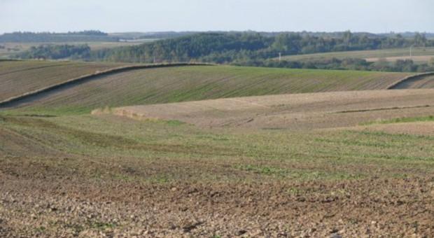 Kujawsko-pomorskie: Największa susza od 140 lat