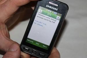 SMS z chlewni