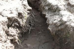 Ukraina: 6 mln hektarów gruntów ornych zagrożonych erozją