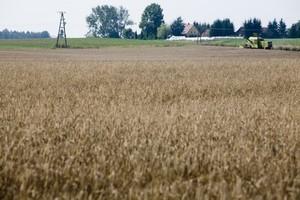 Do 2020 r. zniknie blisko 370 tys. gospodarstw