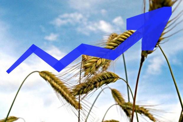 Wzrosty cen surowców rolnych