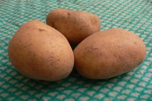 Kartoflany problem