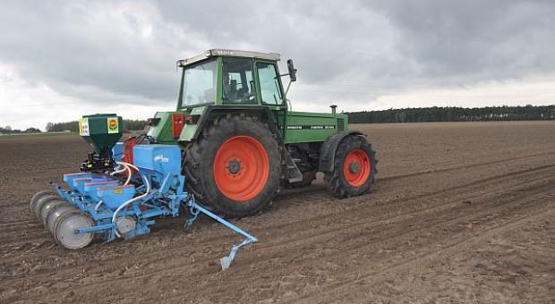 W województwach opolskim i lubelskim już rozpoczęły się siewy kukurydzy