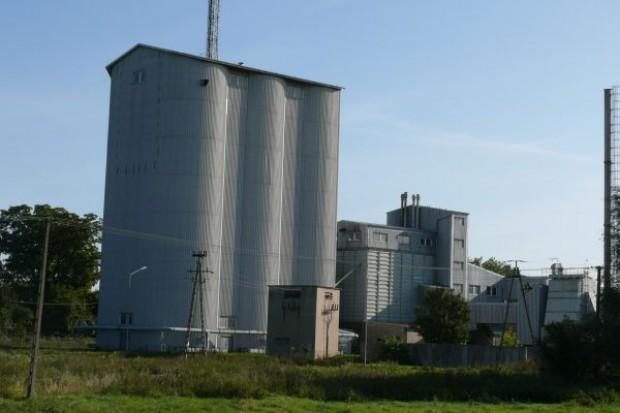 ARR: W czerwcu pszenica po 820-860 zł/t