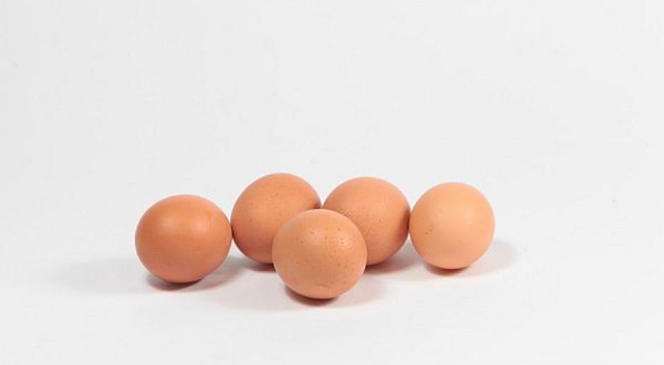 Jajka coraz tańsze