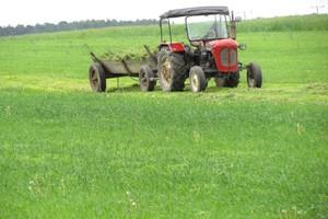 Jak liczyć podatek rolny